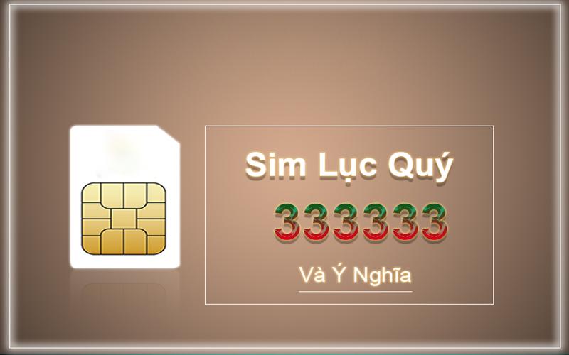 sim-luc-quy-3